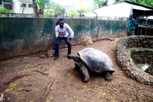 With a 122-yr old tortoise @ the Kenya Falconry