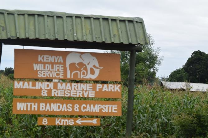 Malindi Marine Park and Reserve