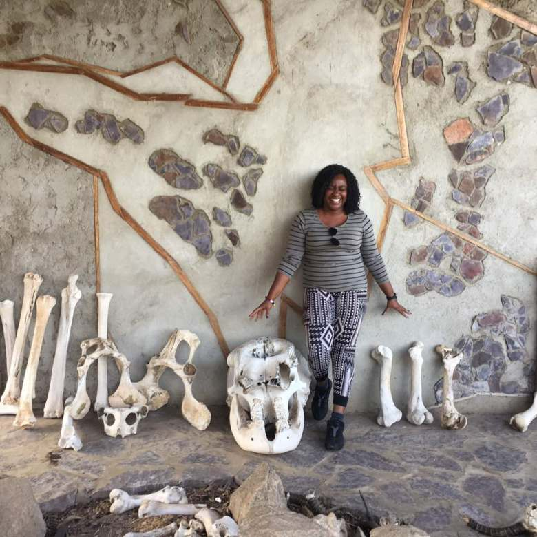Banke with animal skeletons