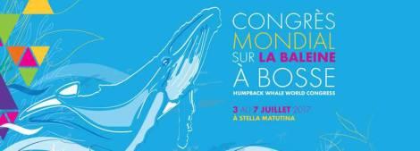 congres-baleines-reunion-03