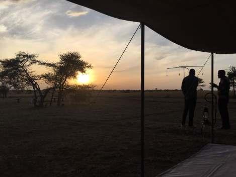 Sunrise in Serengeti