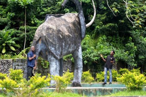 damilare - discoveria - nigeria travel chat - cross river national park