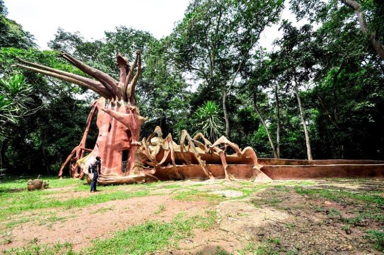 damilare - discoveria - nigeria travel chat - osun osogbo grove