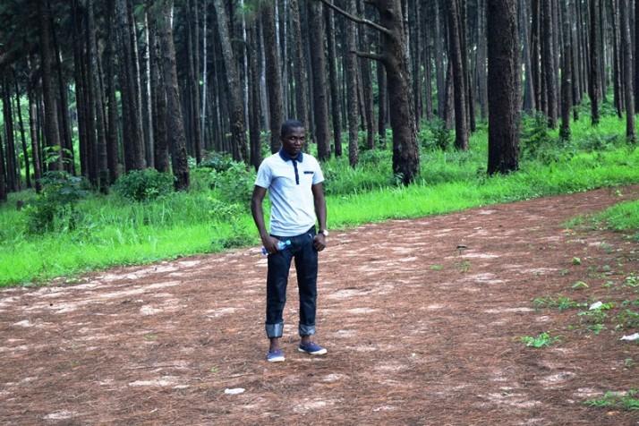 Sam Adeleke - Ngwo Pine Forest